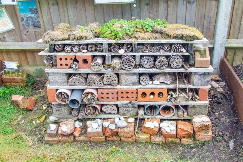 Our Bug Hotel – the children love to explore the garden and find insects, worms etc to populate the hotel!